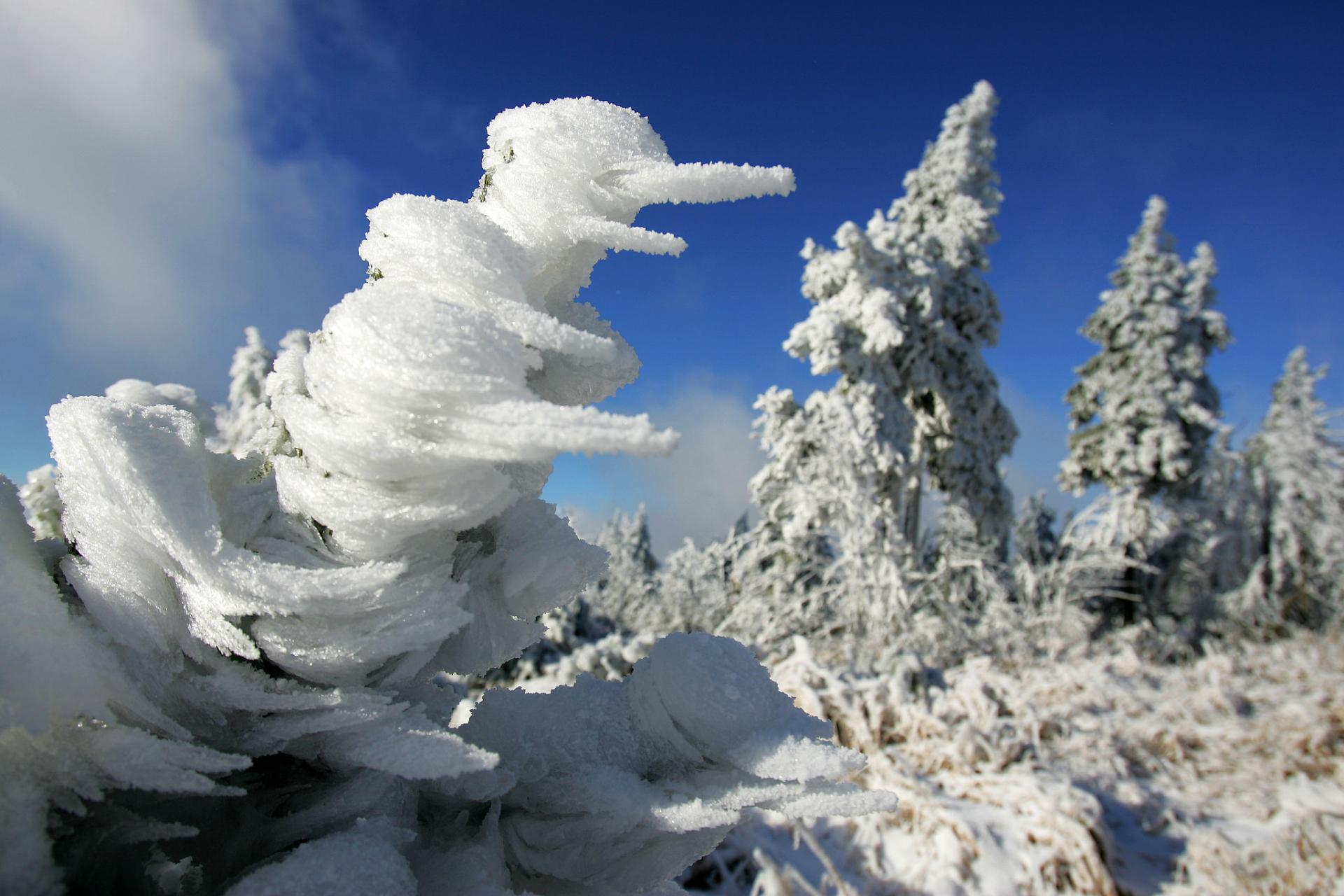 /userfiles/first_snow_left_trees_covered_klinovec_czech_republic_1415103068_1920xh_tt_75.jpg